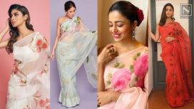 Bollywood Beauties Sporting Some Beautiful Feminine Picchika Saris