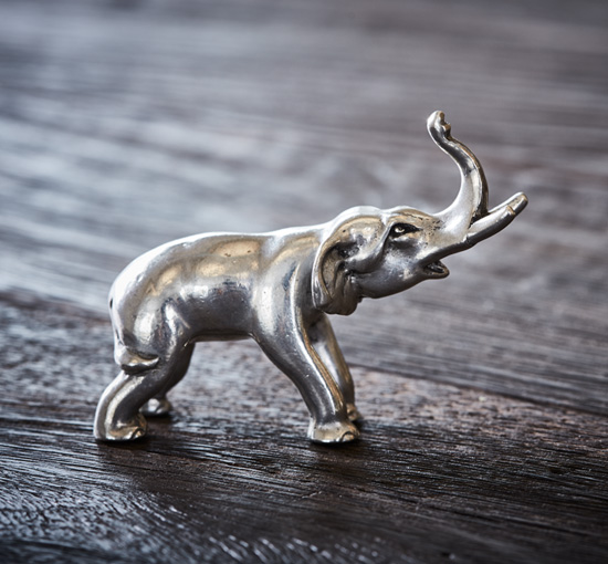 2018-02-23 tenn di038-1 elephant 48 1