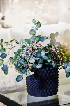 Webbild eucalyptus-1