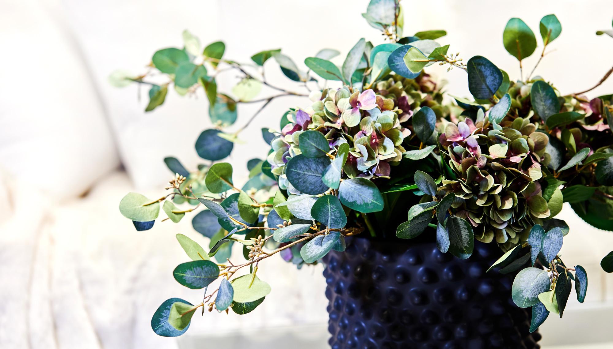 Snittblomma eucalyptus