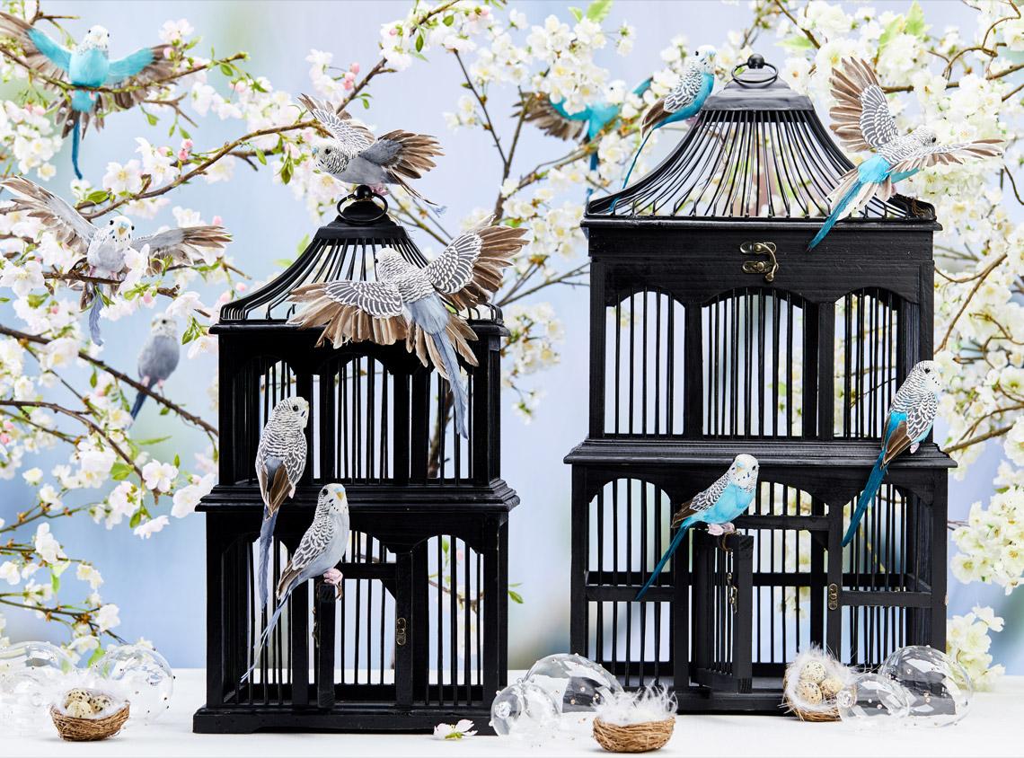 Helbild birdcage-2