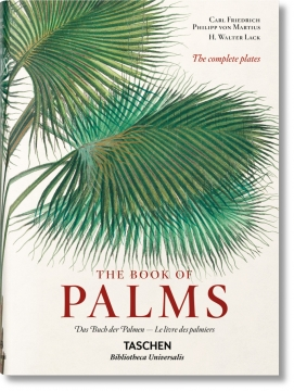 The book of palms 2
