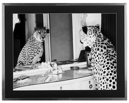Cheetah mirror 2