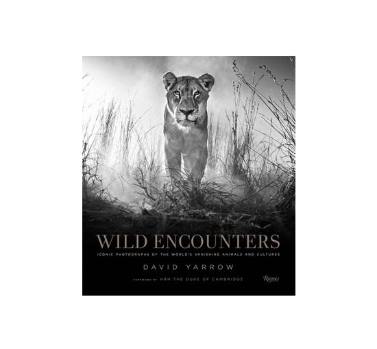 Wild encounters 1