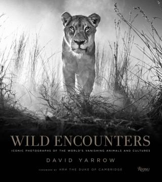 Wild encounters 2