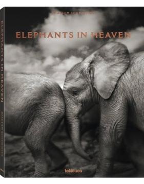 Elephants in heaven 2