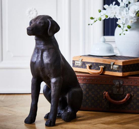 Listbild lord hund