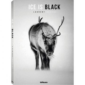 Ice is black 2