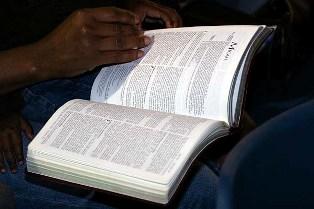 Bibbia in un anno