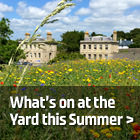 What's on at Royal William Yard