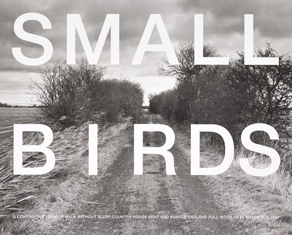 Small Birds / A Continuous 101 Mile Walk without sleep / Country Roads Kent and Sussex England / Full Moon 10 11 November 1992 (from the... (1994)