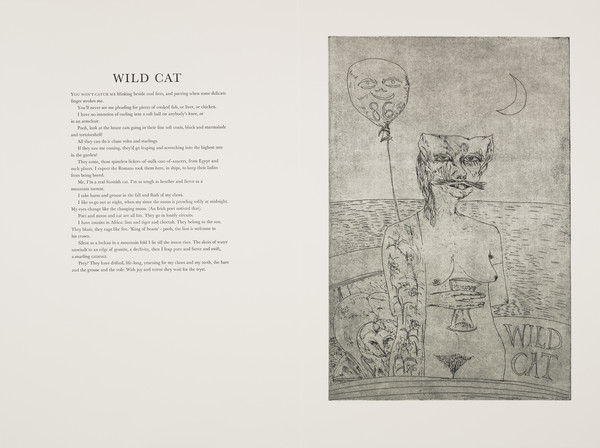 Wildcat (from 'The Scottish Bestiary')