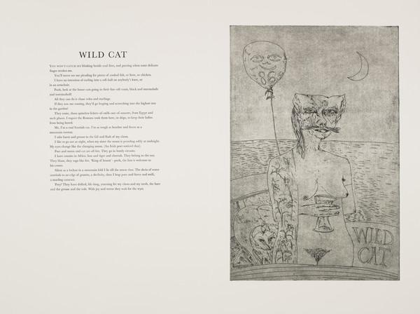 Wildcat (from 'The Scottish Bestiary')