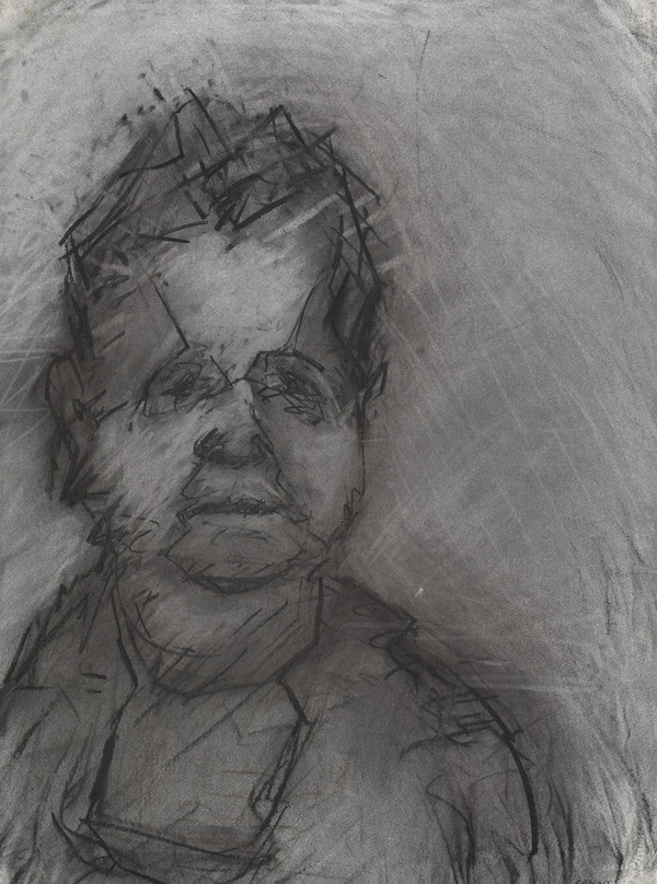 Portrait of Val McDermid II