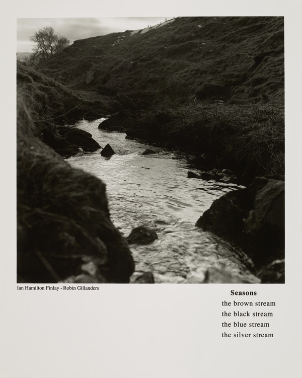 Seasons (with Robin Gillanders) (from the portfolio 'Dear Stieglitz')
