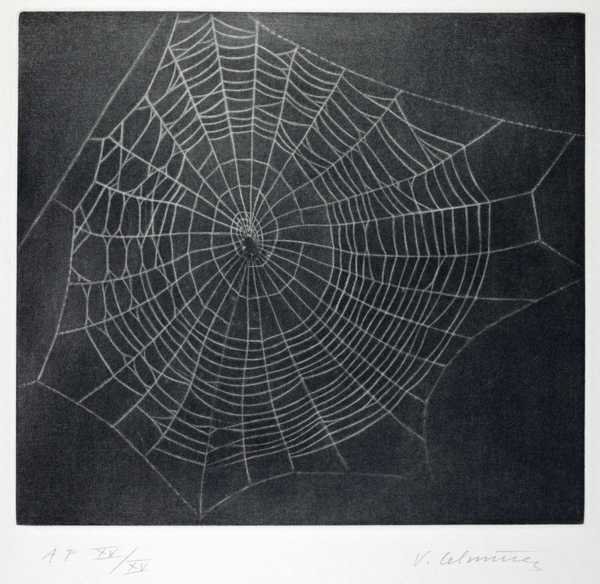 Untitled (Web 1) (2001)