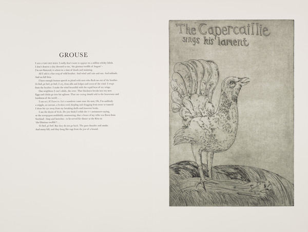 Grouse (from 'The Scottish Bestiary')