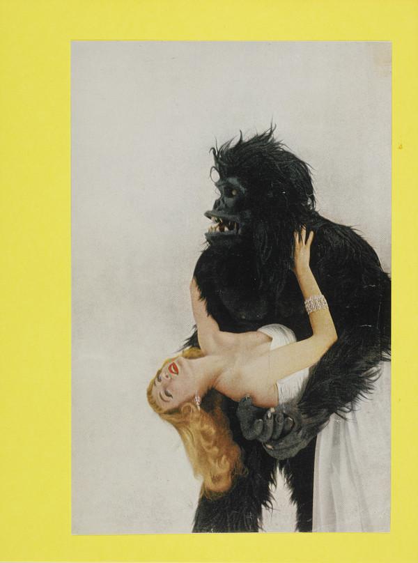 Vogue gorilla with Miss Harper