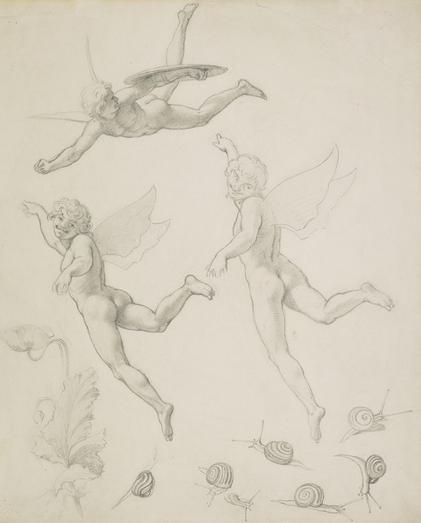 Sheet of Studies of Fairies, Snails and Poppies for the Painting 'The Quarrel of Oberon and Titania'