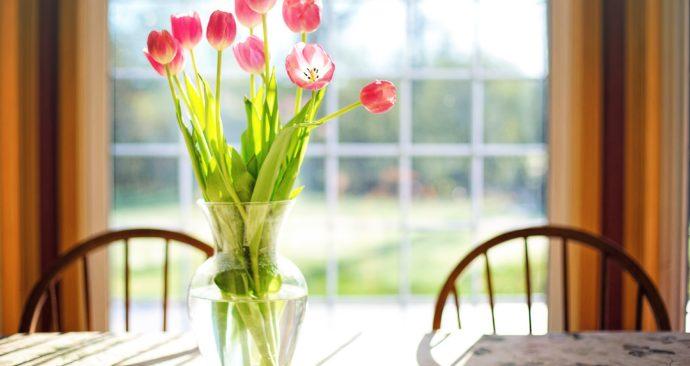 tulips-2239234_1920