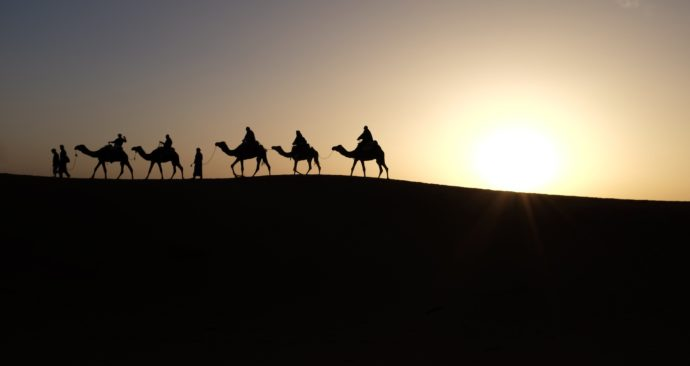 camels-1149803_1920