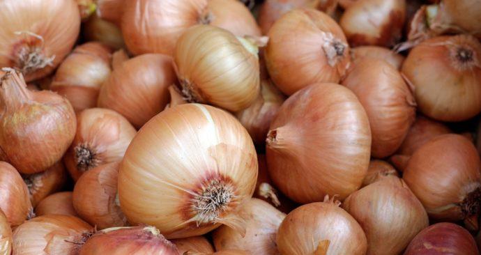 onions-1397037_1920