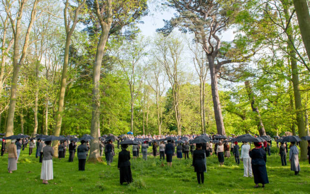 Photo from NNF14 show Souvenir, approx 40 members of the voice project choir stand in a woodland area, each holding a black umbrella.