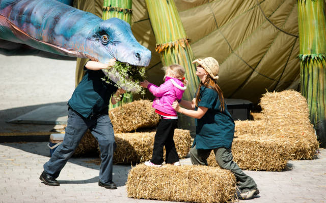 Photo from NNF12 show Dinosaur Petting Zoo, a little girl stands on a straw bale, feeding a huge dinosaur puppet some flowers.