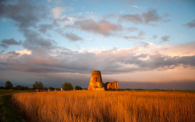 Photo from NNF13 show Ideas of Flight, St Benets Abbey in Norfolk, a field of golden reeds surround the abbey. The sky is blue, with some clouds, the sun is setting.