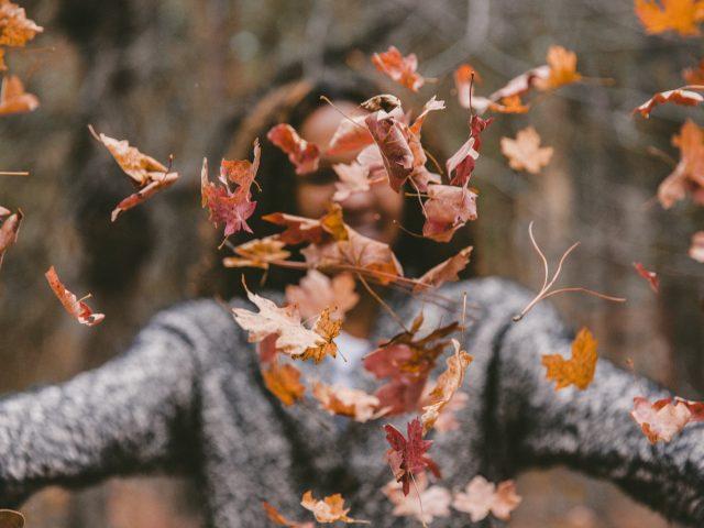 Veroño o la nueva estación