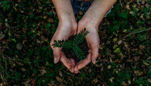 La Tierra en tus manos
