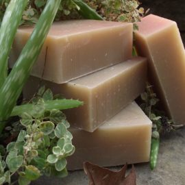 Chagrin Valley Soap And Salve Soap Shampoo