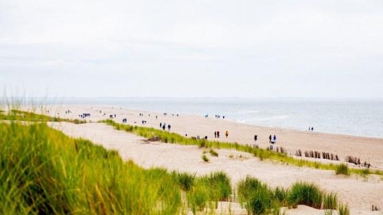 BBCT2019 Z9 Maasvlakte hondenetappe door Lize Kraan (62)