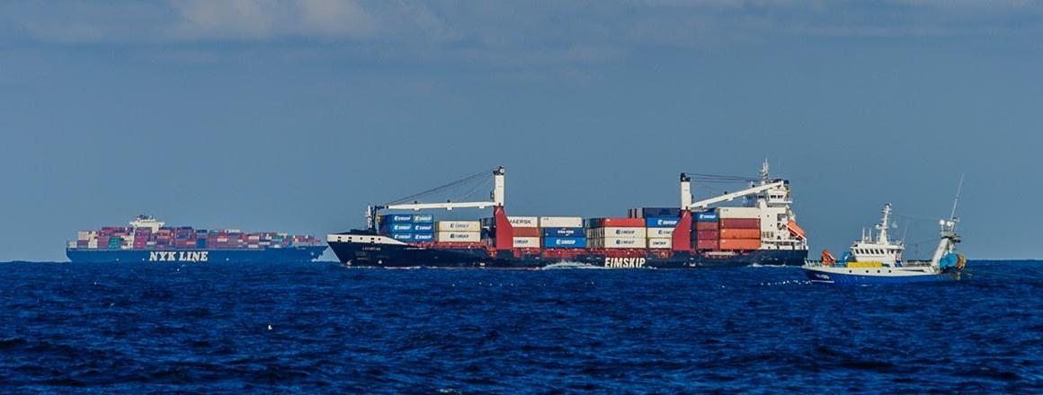 Containerschepen door Juan Cuetos / OCEANA op de Bruine Bank