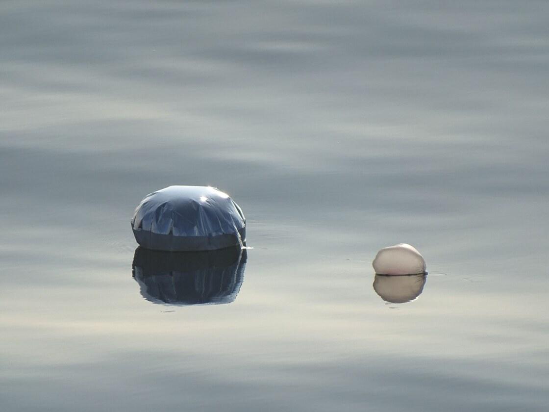 Mei 2019 Ballon op zee Bruine Bank door Jip Vrooman