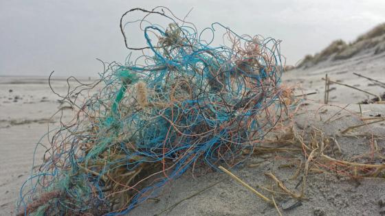 Kluwen vispluis op het strand.