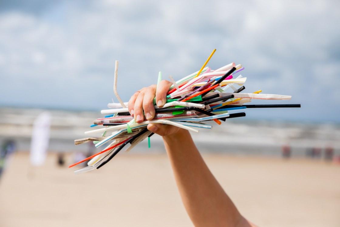 Rietjes die we tijdens de Boskalis Beach Cleanup Tour van 2019 op het strand hebben gevonden.