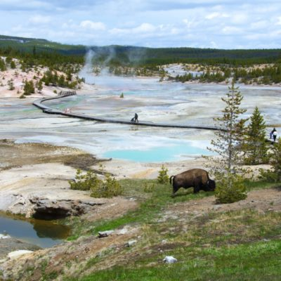 Fottur i Rocky Mountains og Yellowstone
