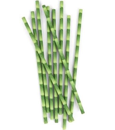 Paper Straws, Bamboo, 21cm, 6mm Bore, 250