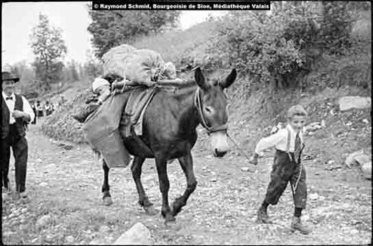La mule berceuse, Savièse