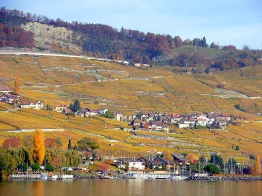 Le Lavaux