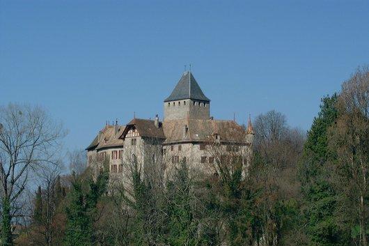 Le Château de Blonay en automne, 2008