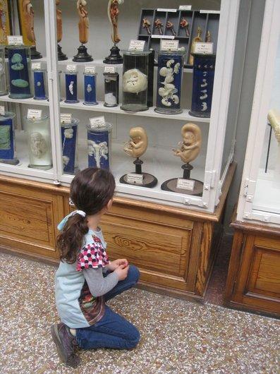 """Mathilde observe """"L'origine de la vie""""...."""