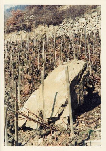 Quand le vigneron monte à sa vigne,...