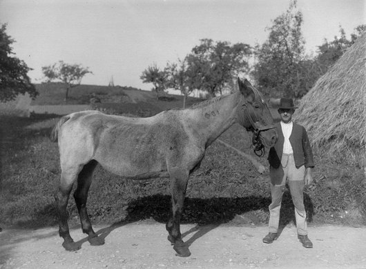 Chernex, Edmond Chevalley et son cheval