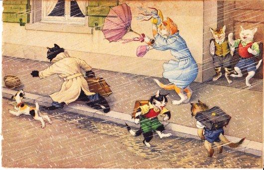 Carte postale des chats.....