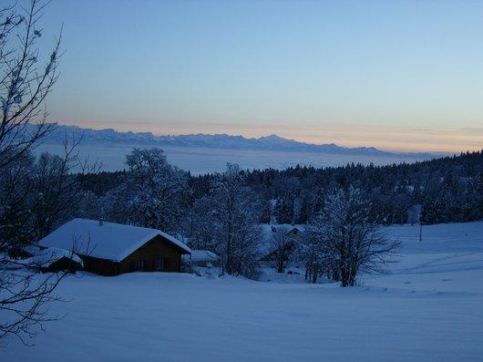 Les Loges Vue des Alpes_415