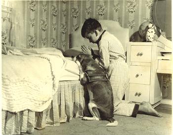La prière du soir du jeune garçon avec son chien