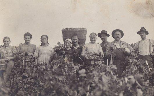 Familles de vigneron, Lutry