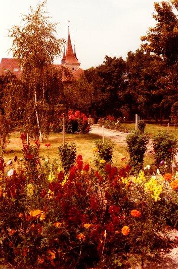 Propriété Casimir Frochaux vue du jardin